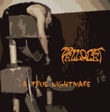 "Debut album ""A True Nightmare"""