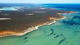 Shark Bay - 3178