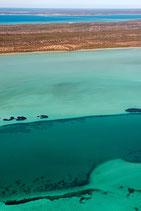 Shark Bay - 3164
