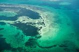 Shark Bay - 3171