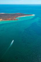 Shark Bay -  3208