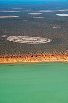 Shark Bay -  3183