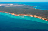 Shark Bay - 3197