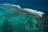 Coral Bay Reef - 3097