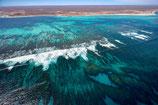Coral Bay -  4697
