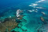 Coral Bay Coral Reef - 3117