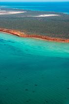 Shark Bay - 3212