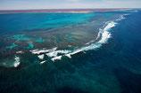 Coral Bay - 4619