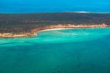 Shark Bay - 3215