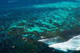 Coral Bay - 3109