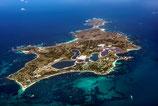 Rottnest Island - 1012