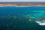 Coral Bay - 3105