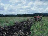 1985 Traktorenstation Mtwara