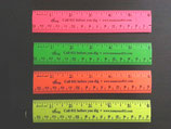 "6"" Neon Rulers (assorted colors)"