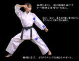 【東海堂形用空手衣】飛龍HRU