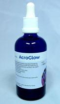 Korallenzucht Acro Glow