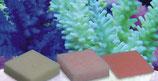 Korallenzucht Automatic Elements Amino Acid Konzentrat