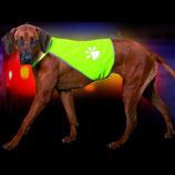 Safety Dog Sicherheitsweste