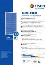 RISEN RSM 260 Watt Solarmodule