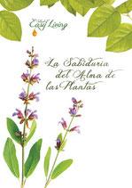 La Sabiduría del Alma de las Plantas
