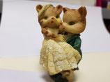 Pareja de novios gatitos, novia en brazos