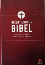 Orientierungsbibel - Studienbibel