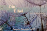 Die Bibel Pocket - nach Martin Luther