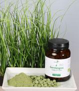 Gerstengras - 100 % Bio