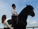 Cours d'équitation - Collectif ou Particulier