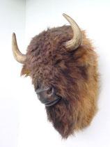 réplica de cabeza de bisón | réplicas de bisontes