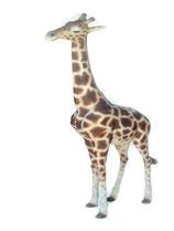 Figura de jirafa de pie | réplicas de jirafas