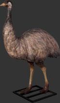 RÉPLICA DE EMU AUSTRALIANO