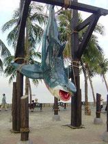 RÉPLICA DE GRAN TIBURON BLANCO | Figuras de tiburones