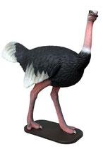 Réplica de avestruz caminando para decorar parques temáticos