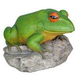Figura de rana en piedra grande