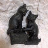 本と猫(キャットトーク)