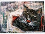 猫・ねこ・ネコのポストカード