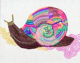 虹のカタツムリ