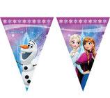 Bandierine Frozen Luci del Nord 2,3 m
