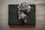 Hundematratze 'Schonzeit'
