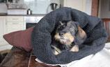 Hundeschlafsack
