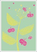 SG_Spring Schmetterlinge