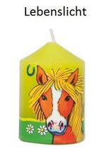 Pony Lebenslicht