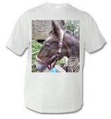 Pony T-Shirt 005