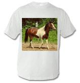 Pony T-Shirt 002