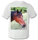Pony T-Shirt 007