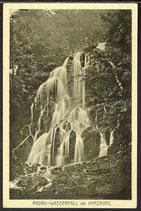 AK Radau Wasserfall bei Harzburg   13/44
