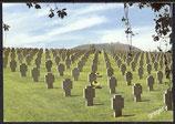 AK Deutscher Soldatenfriedhof Bergheim, Frankreich    38/28