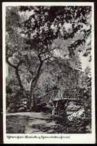 AK Glauchau, Brücke z. Gundelteichinsel   73/1