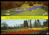 AK  Insel Mainau im Bodensee, Zweibildkarte   70/43
